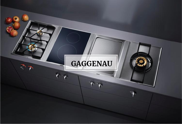 Aces S.A.L. antaki holding Gaggenau beirut lebanon kitchen refrigerator washing machine built in microwave oven hood